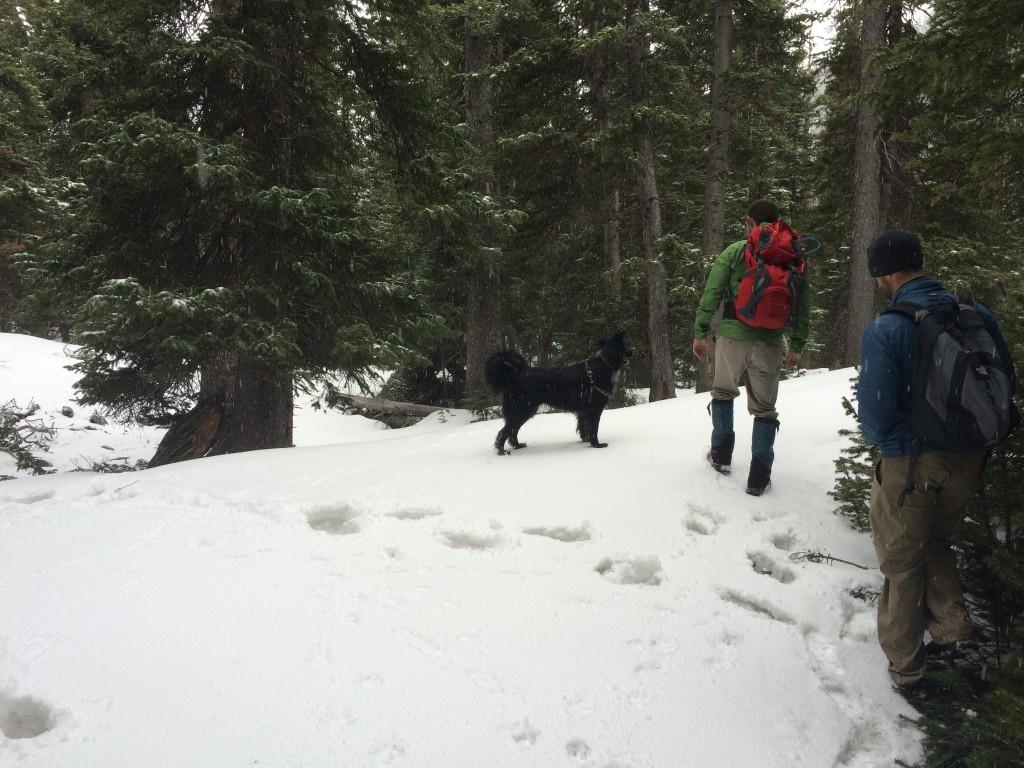 Shelf Lake Trail Upper Portion