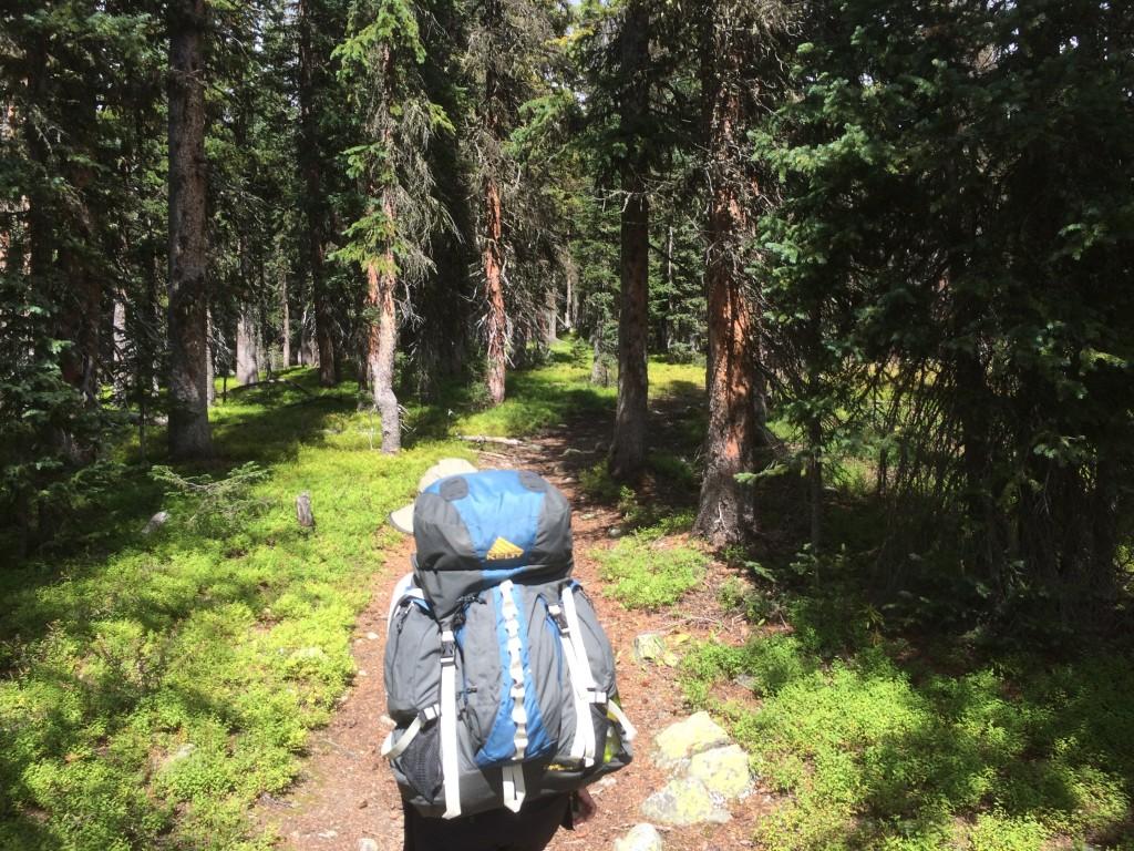 Hiking Nice Shady Single Track