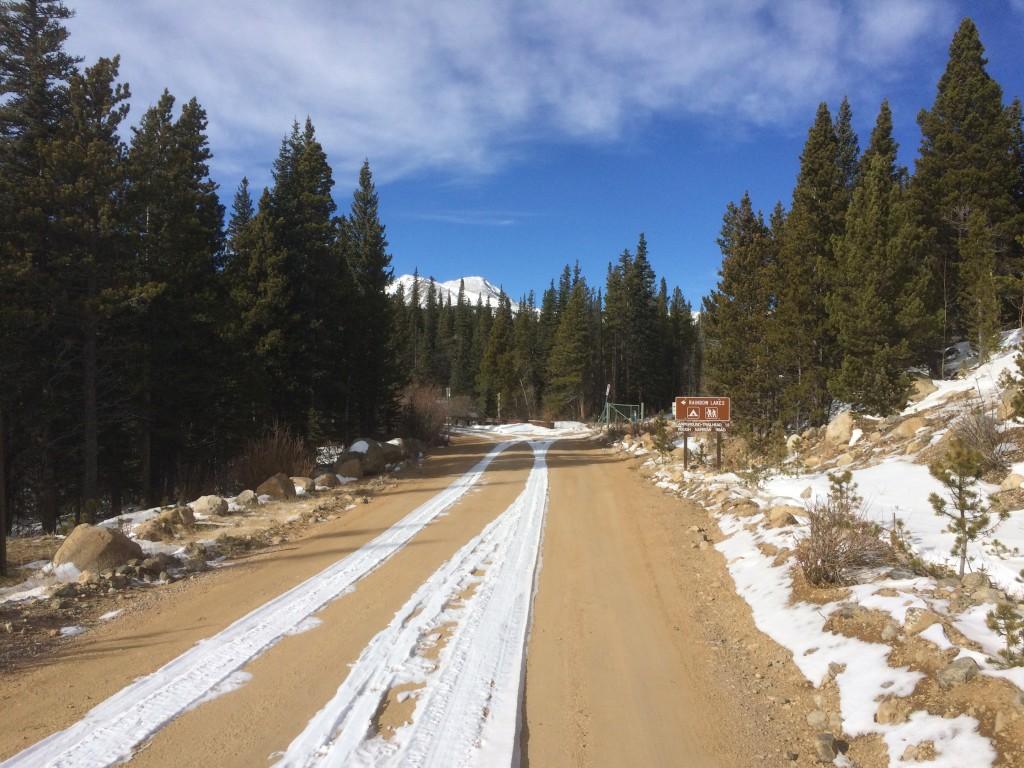 Bare road