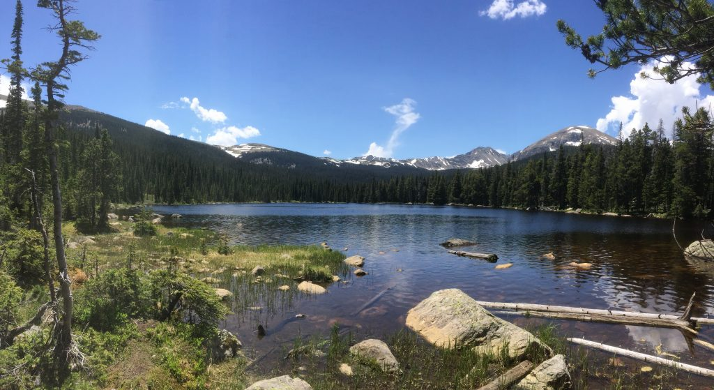 Finch Lake in Summer